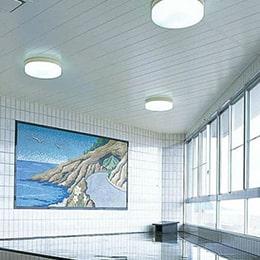 天井用浴室パネル