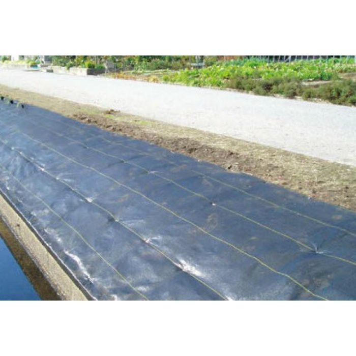 ウエトレー100 防草・植栽シート UE-100 45373300