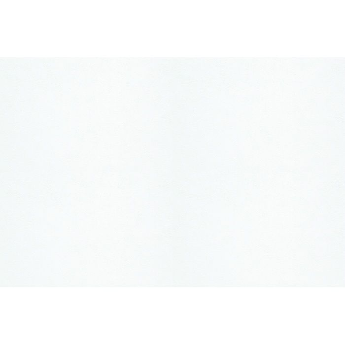 WEN4062 環境・素材コレクション 竹ウォール