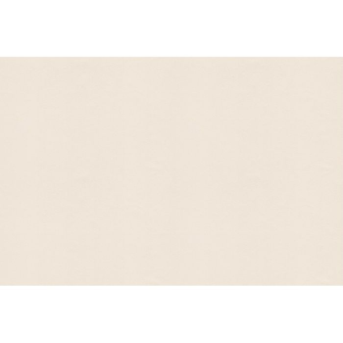 WEN4406 環境・素材コレクション 珪藻土・じゅらく