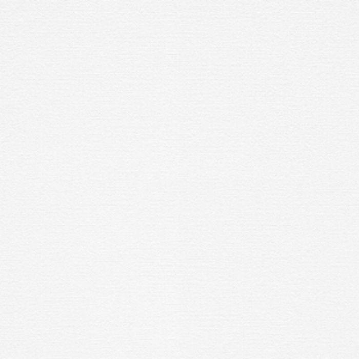 WF6139 不燃認定壁紙1000 抗ウイルス壁紙【ウイルス対策品】