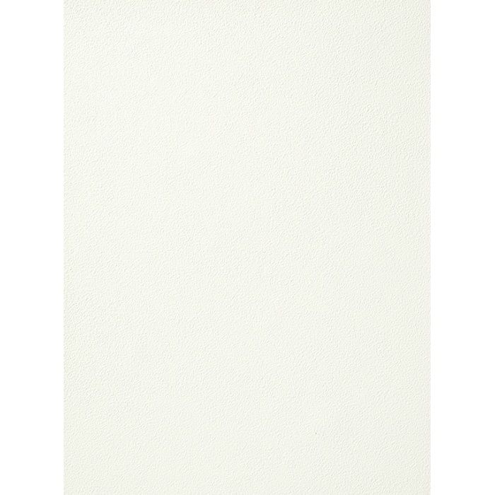 RU-2450 不燃認定壁紙 空気を洗う壁紙 ペイントタッチ ローラー / 細目 / ニュートラル