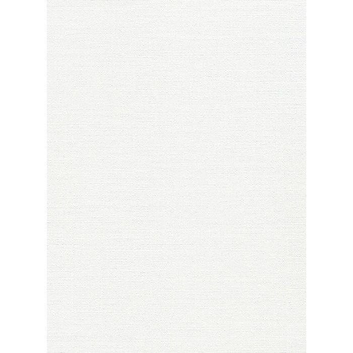 RU-2553 不燃認定壁紙 抗菌・汚れ防止 スーパーハード