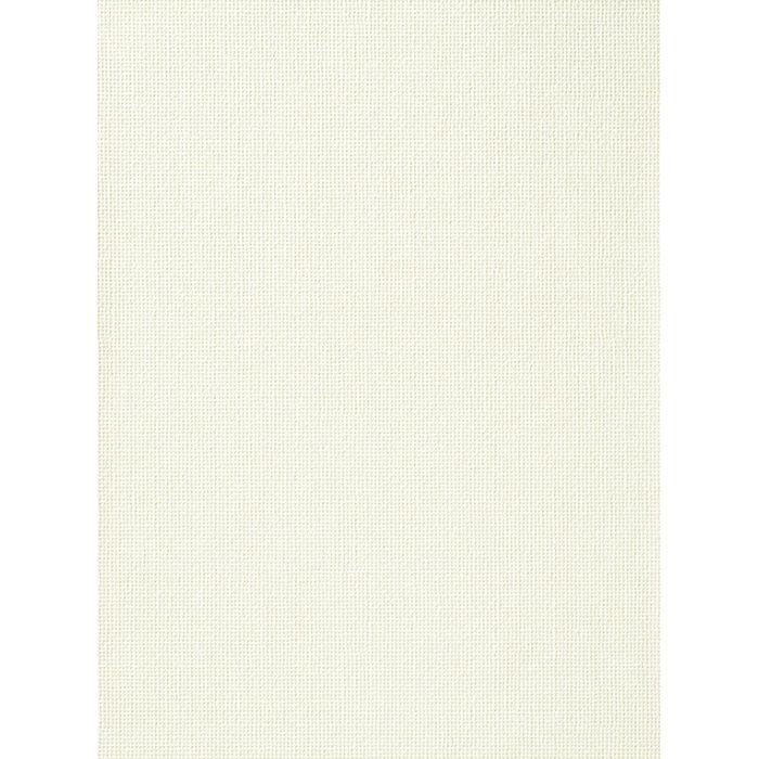 RU-2581 不燃認定壁紙 抗菌・汚れ防止 エバール