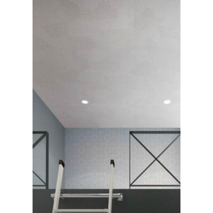 RH-4842 天井 塗り壁