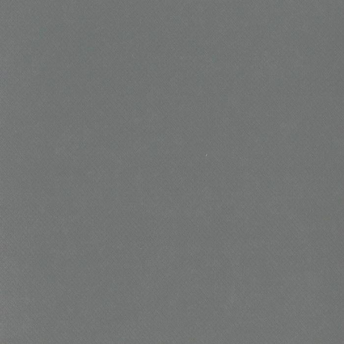 SFP4618 シンコールフロア SFP [プレーン] プレーン(2.5mm厚)