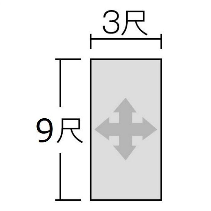 FANA1995ZMN セラール 3×9