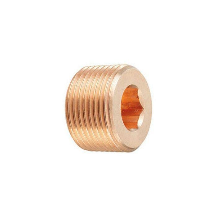 616-805-25 配管継手 砲金豆プラグ 25